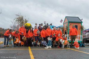 dog walking team