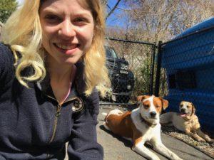 lexington dog walker