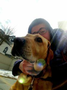 Malden Dog Walker