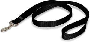 best leash is a pet safe 4 ft nylon leash