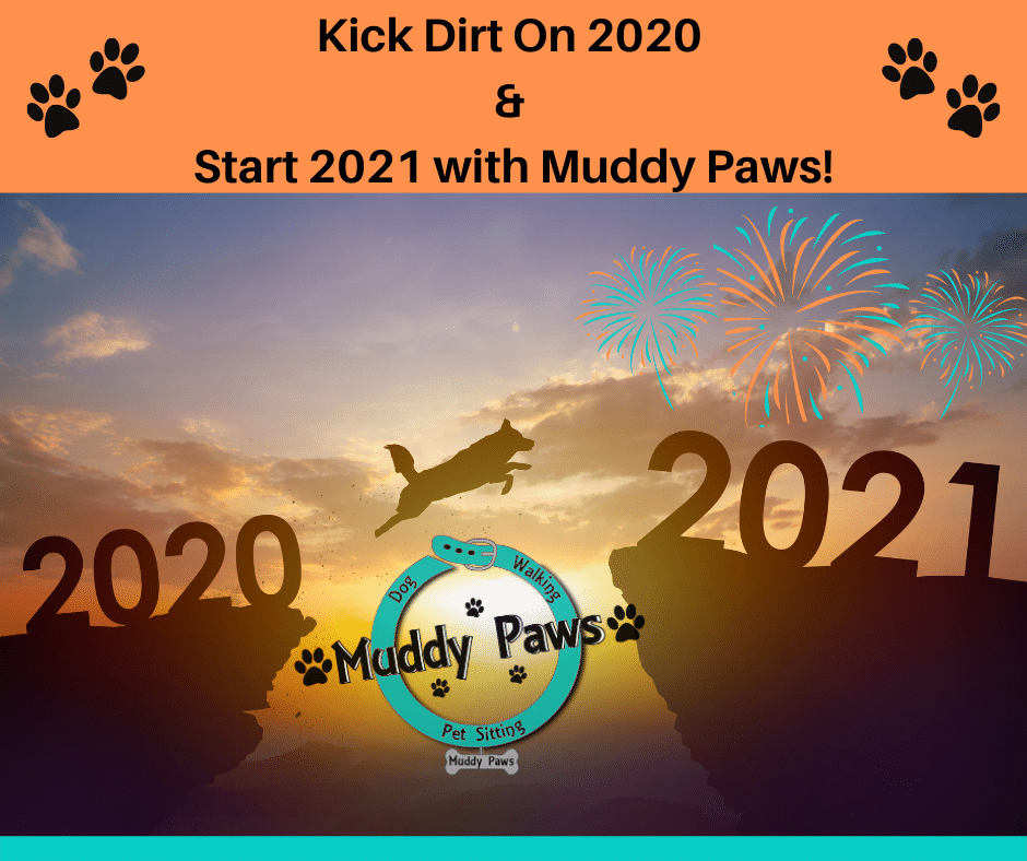 put 2020 behind you and enter 2021 as the best year ever with muddy paws dog walking and pet sitting services